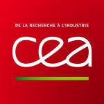 CEA consultants